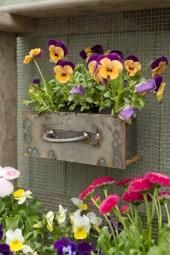 Eisenschublade für Blumenzwiebelkiste