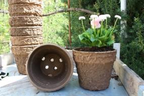 Kompostierbarer Pflanztopf 3 L