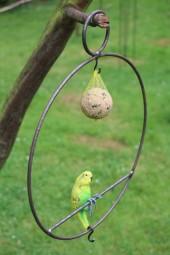 Vogeltankstelle Nr. 3