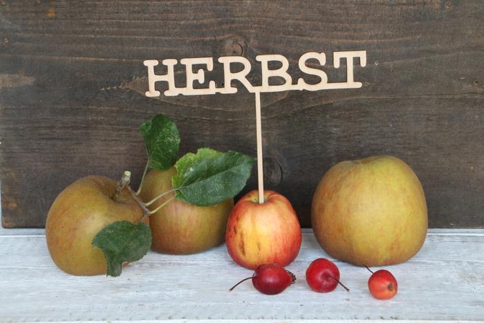 """Apfelstecker- und Schattenwerfer """"Herbst"""""""